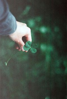 Lucky! You do not need the clover!