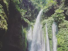Lombok, Waterfall, Asia, Island, Green, Instagram Posts, Outdoor, Color, Beautiful