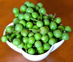 berikut adalah Manfaat buah cepokak untuk kesehatan baik tubuh maupun masalah pada mata seperti mata minus dll.