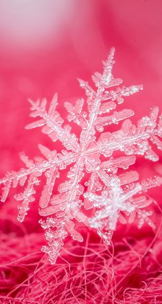 Pin by linz on cool snowflake pictures in 2019 зима, снежинк Snowflake Wallpaper, Christmas Phone Wallpaper, Holiday Wallpaper, Winter Wallpaper, Pink Christmas, Winter Christmas, Christmas Time, Cellphone Wallpaper, Iphone Wallpaper