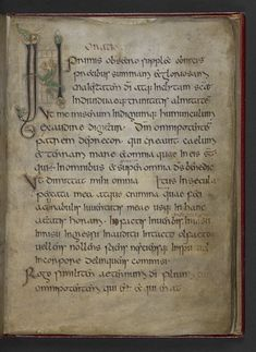 Elves in Old English manuscripts
