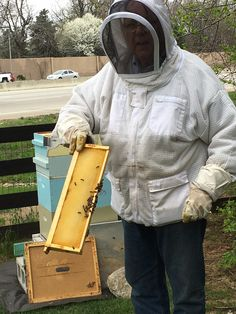 Texas Roadhouse Helping Bring Back The Bees With Hives At Headquarters Story Photo