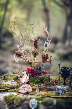rustic frost woodland wedding centerpiece / http://www.deerpearlflowers.com/moss-decor-ideas-for-a-nature-wedding/2/