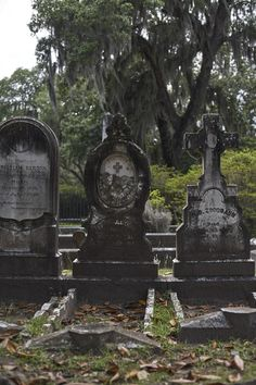 retoyman:  retoyman in respect at the Bonaventure Cemetery, near Savannah Georgia. Three beautiful headstones.