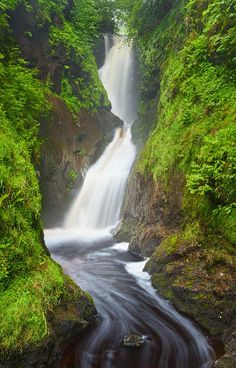 Rainy Glenariff Forest Park, Northern Ireland. Close to Emerald Heritage land within the Glens of Antrim - Just beautiful!