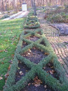 My ideal garden would include a pattern like this of thyme (or some other evergreen) and other herbs intertwined in the pattern