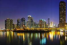 Image no - 9519588 - Chicago