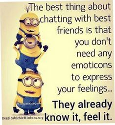 29 Minion Quotes for You Minions Images, Minion Pictures, Funny Pictures, Funny Pics, Funny Minion Memes, Minions Quotes, Funny Jokes, Minion Humor, Funny Insults