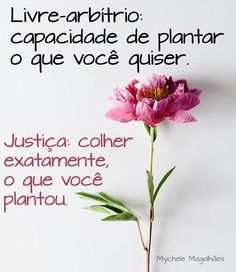 Reasons to Learn Brazilian Portuguese Portuguese Words, Learn Brazilian Portuguese, L Quotes, Beauty Quotes, I Love Her Quotes, Wise Mind, All Of The Lights, Letter Board, Wisdom