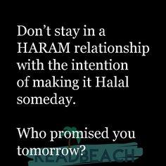 حلال Halal Quotes