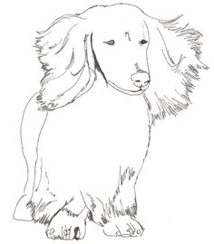 Halloween coloring pages dachshund stamps pinterest for Weiner dog coloring pages