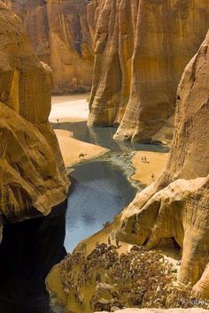 Hundreds of camels are grateful to be herded into the knee deep water. -There's A Place You Can Barely See In The Middle Of The Desert. But When You Go Closer… AMAZING.Guelta d'Archei and it is an oasis