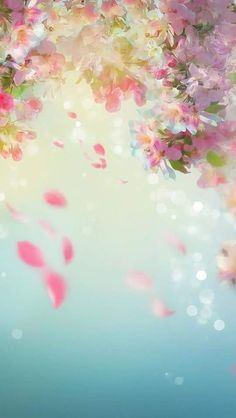 The sound of petals falling