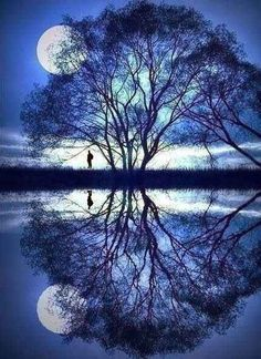 18. Reflections ! Beauty of a Moon, azure sky and a perfectly branched Tree.