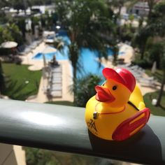 Thanks to Amanda Lockyer for sending us a picture of her #travelduck on holiday in Spain via Instagram!