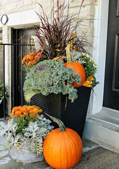 Pumpkins and kale