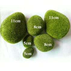 High Quality Wholesale Moss - Buy Cheap Moss from Best Moss Wholesalers | DHgate.com - Page 1