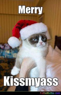 Merry Kissmyass - via FattoMatto.com - #FattoMatto