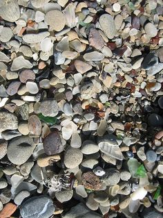 sea glass beach?..want to go