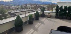 Patio, Outdoor Decor, Home Decor, Environment, Profile, Faux Plants, Backyard Patio, Weather, Decorating Ideas