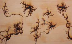 volt plank hout als je 15.000 volt door een plank jaagt, groeien er gewoon nieuwe bomen!