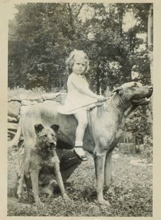 Vintage photo, girl riding large dog while another sits beside. // KaufmannsPuppyTraining.com // Kaufmann's Puppy Training // dog training // dog love // puppy love // #MasterDogTrainingandSocializing