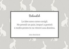 #quote #steinbeck #rabbit #conigli #idea #copywriter  www.balenalab.com