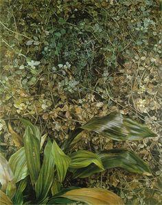 Lucien Freud, Two Plants, 1977-80