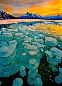Frozen bubbles of methane trapped beneath Alberta's Lake Abraham are beautiful, but dangerous if popped arAbraham Lake - Alberta, Canada
