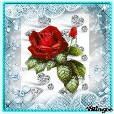 Rosal de Diamantes