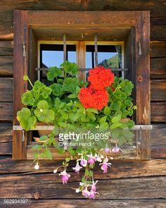 Window with flower box, Laerchkaralm mountain lodge,... #donnersbachwald: Window with flower box, Laerchkaralm mountain… #donnersbachwald