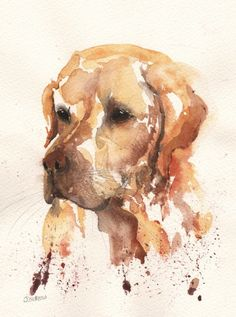 watercolour paintings of domestic animals by award-winning artist Jenny Oldknow