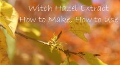 Witch Hazel extract are endless particularly for skin and household, and you won't believe how easy it is to make yourself.