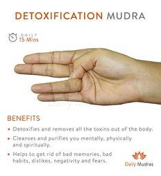 Cleanses all toxins From the body. Yoga for body and mind Yoga Mudra, Yoga Restaurador, Yoga Kundalini, Pranayama, Hand Yoga, Chakra Meditation, Meditation Music, Mindfulness Meditation, Chakra Healing