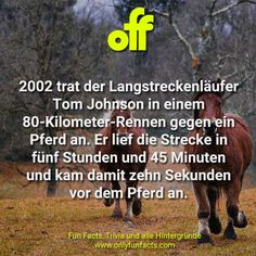 49 Sport Fakten - Nr. 26 ist wirklich unglaublich - Only Fun Facts Facts, Funny, Sports, Movie Posters, Life, Unbelievable Facts, Film Poster, Sport, Popcorn Posters