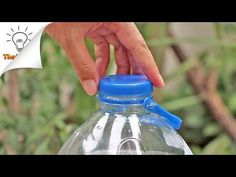 Recycling egg cartons is fun! 8 Creative Ideas To Recycling Egg Carton That You've Never Thought of Before. Plastic Bottle Cutter, Reuse Plastic Bottles, Recycled Bottles, Life Hacks Youtube, Bottle Garden, Pet Bottle, Diy Recycle, Diy Box, Hacks Diy