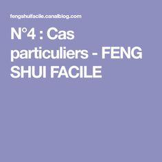 N°4 : Cas particuliers - FENG SHUI FACILE
