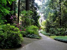 Path to Servite Monastery at The Grotto of Our Sorrowful Mother (The Grotto), Portland, Oregon.  The Grotto is a beautiful place to collect your self and pray.