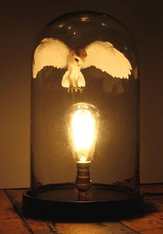 Hand Made Paper And Wood Barn Owl In Bell Jar With Light
