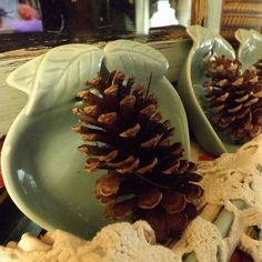 PINECONES,  Beautiful Natural and Ideal for Decorating Your Home