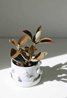 DIY 3D White Planter.