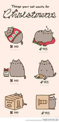 Lol...if the cat in the pic was a fat white cat it would so totally be Jake! | See more about cats, kitty and christmas.