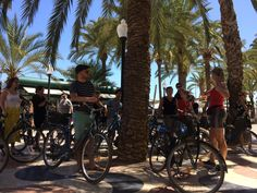 Alicante, Bicycle, Everything, Bike, Bicycle Kick, Bicycles