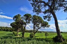 Italy, Italy, Tuscany, Nature, Landscape, Sky #italy, #italy, #tuscany, #nature, #landscape, #sky