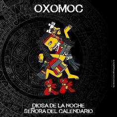 Mayan Astrology, Aztec Symbols, Mexican Artwork, Ancient Aztecs, Aztec Culture, Aztec Art, Mesoamerican, Chicano Art, Flash Art