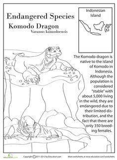 Worksheets: Endangered Species: Komodo Dragon. (4th grade w/s)