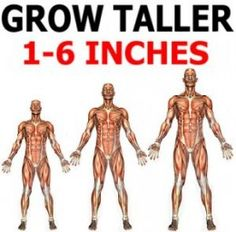 Grow Taller 1-6 Inches