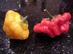 Scotch Bonnets - Scotch Bonnet – Wikipedia