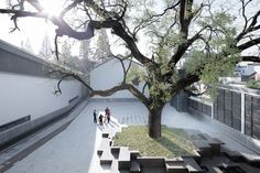 Atelier Li Xinggang, Xia Zhi · Jixi Museum · Divisare