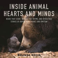 In a world where a growing body of scientific research is closing the gap between the human and non-human, Inside Animal Hearts and Minds invites us to change the way we view animals, the world, and our place in it.